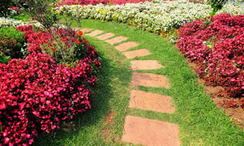 Landscaping in Louisville STATE% Landscaping Services in  Louisville STATE% Landscapers in  Louisville STATE%