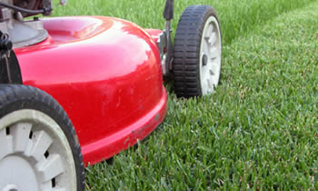 Lawn Care in Louisville KY Lawn Care Services in Louisville KY Quality Lawn Care in Louisville KY